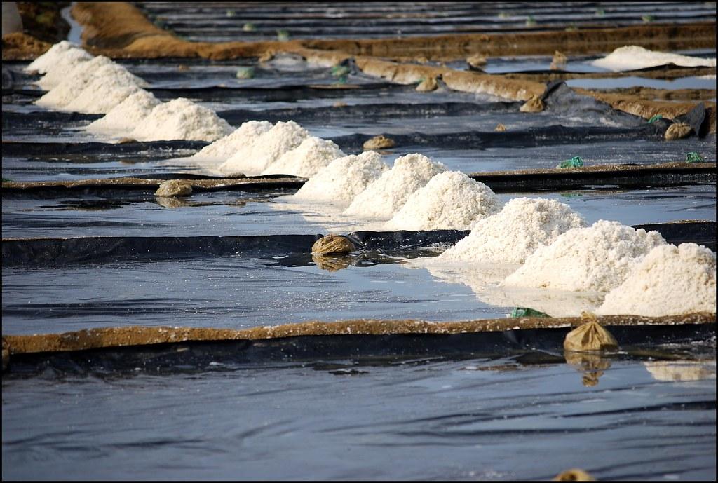 Bạt chống thấm lót ruộng muối